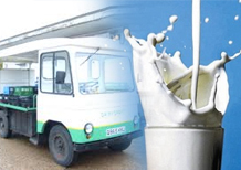 Direct Store Delivery for Dairy